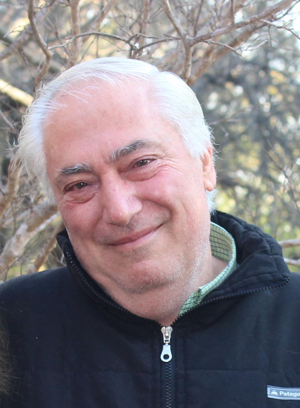 Ing. Belluomini Aldo