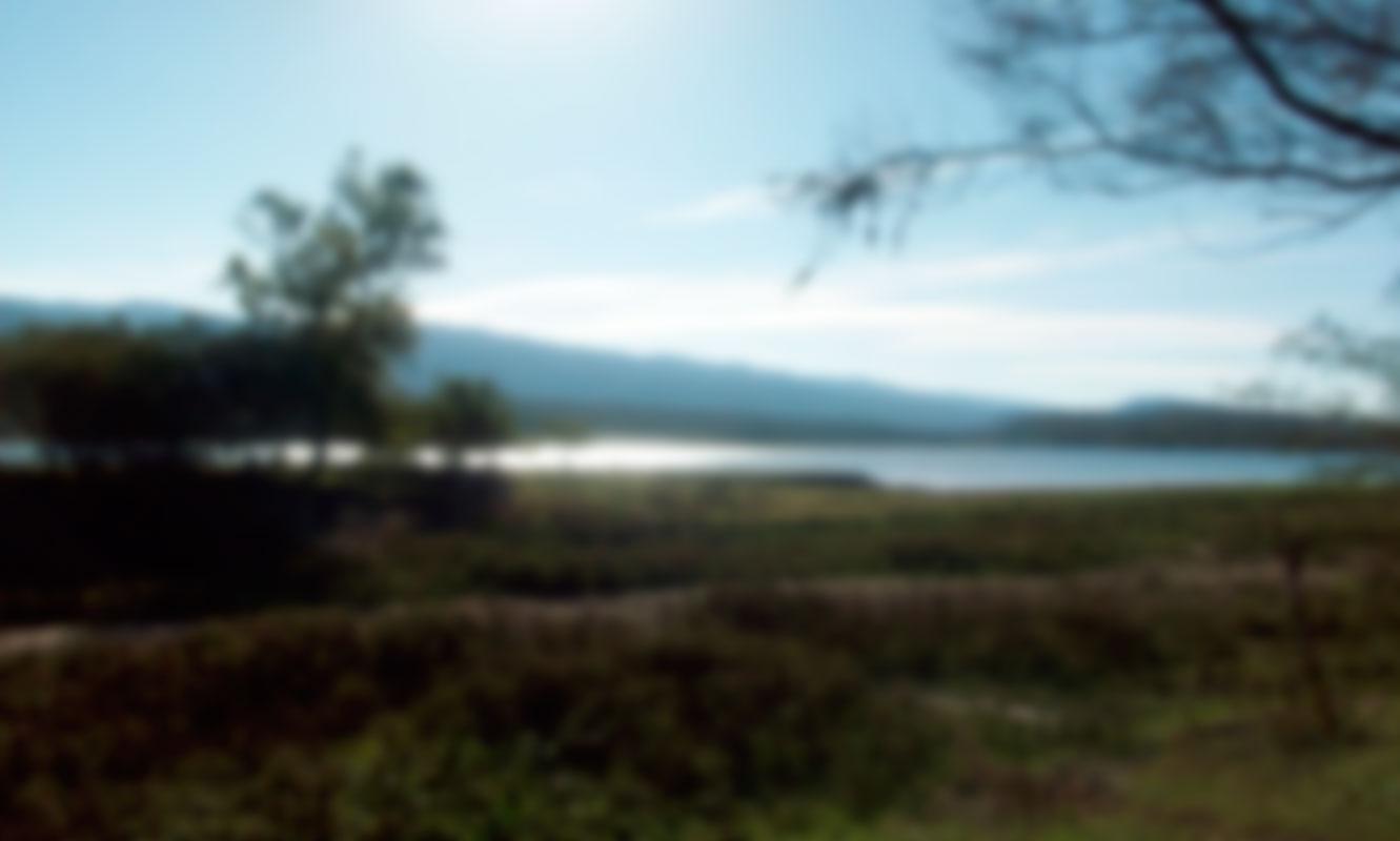 ecologia-del-paisaje