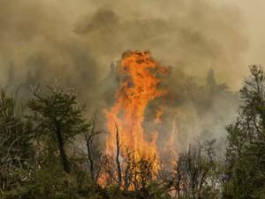 Inundaciones Santiago del E. Incendio Bosques Cholila