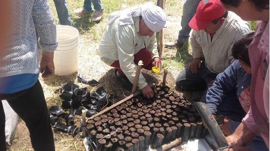 Facultad de ciencias forestales unse capacitaci n sobre for Construccion de viveros forestales
