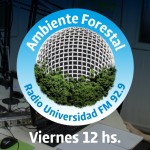 featrue-radio-universidad