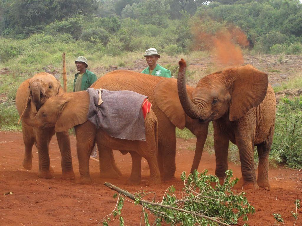 Kenia ©Pablo Sigismondi